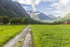 Alte Straße, die zu entfernte Berge führt Stockfotografie