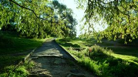 Alte Straße im Park Stockfotos