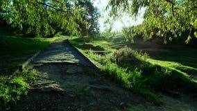 Alte Straße im Park Stockfoto