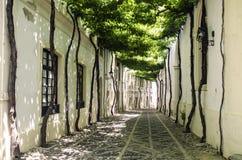 Alte Straße, typischer Europäer Lizenzfreie Stockfotografie