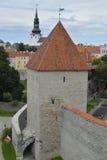 Alte Straße von Tallinn Estland Lizenzfreies Stockbild