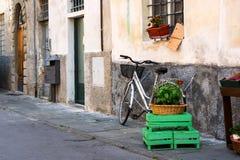 Alte Straßen von Lucca, Italien Stockbilder