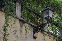 Alte Straßenlaterne mit einem Balkon und einer Kletterpflanze Stockfotografie