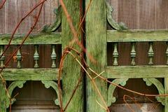 Alte Tür überwältigt mit Reben Stockfotos