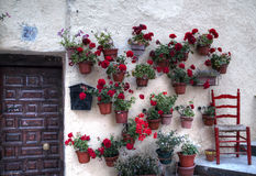 Alte Tür und rote Pelargonien Stockbilder