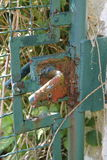 Alte Tür, verrostete Metalltür, Gittertür, Tür Stockbilder