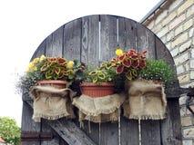 Alte Tür verziert mit Blumen Lizenzfreie Stockfotografie