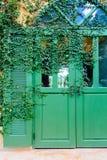 Alte Tür zugeschlossen mit Rebabdeckung die Tür Stockfotos