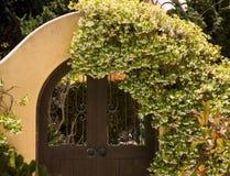 Alte Türen mit Blumen Stockfotos