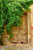 Alte Türen unter dem Baum - gefärbt Lizenzfreies Stockfoto
