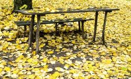 Alte Tabelle und Bank in einem Wald im Herbst Stockfotografie
