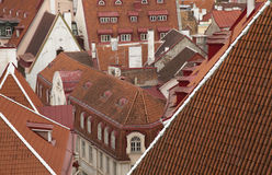 Alte Tallin-Dachspitzen Lizenzfreie Stockfotos