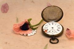 Alte Taschenuhr und -mohnblume Lizenzfreie Stockfotografie