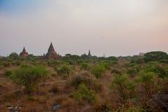 Alte Tempel in Bagan, Myanmar birma Stockfotografie