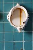 Alte Toiletten Lizenzfreie Stockfotografie