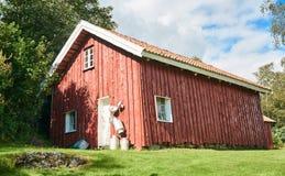 Alte traditionelle norwegische rote Scheune, um den Birkenwald Lizenzfreie Stockbilder