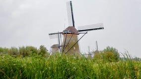 Alte traditionelle Windmühlen von Kinderdijk stock video footage