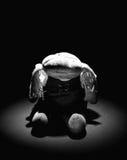 Alte traurige Tuchpuppe mit Punktleuchte B/W #2 Stockfotos