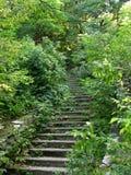 Alte Treppe Stockfotos