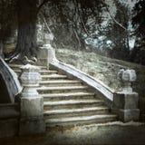 Alte Treppen des Parks Stockfotografie