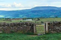 Alte Trockenmauer in Waliser-Landschaft, Berge im Hintergrund Stockbild