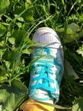Alte Turnschuhe auf dem Gras Lizenzfreie Stockfotos
