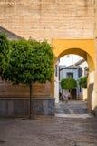 Alte typische Straße mit Orangenbaum und Bogen in Cordoba Lizenzfreie Stockbilder