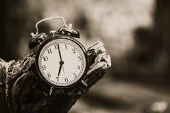 Alte Uhr der Weinleseart auf hölzerner alter Baumzeit bei 7 O-` Uhr Lizenzfreie Stockfotografie