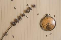 Alte Uhr und lavanda Blume Stockbild