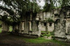 Alte und abgenutzte Ruinen, verlassenes Gebäude umgeben durch viele Vegetation und Bäume lizenzfreies stockfoto