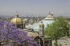 Alte und neue Basilika von Guadalupe Lizenzfreies Stockbild