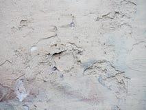 Alte und schöne Betonmauer Stockfotos