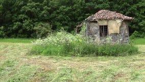 Alte und verlassene Kabine in der Wiese stock footage