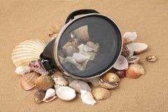 Alte Unterwasseratemgerät Schablone und Seashells Stockfotografie