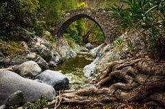 Alte venetianische Brücke Lizenzfreies Stockfoto