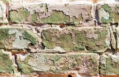 Alte veraltete gemalte Backsteinmauer Lizenzfreies Stockbild
