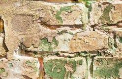 Alte veraltete gemalte Backsteinmauernahaufnahme Lizenzfreie Stockfotos