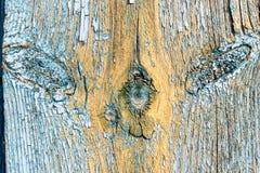 Alte verblaßte blaue Farbe auf gealterter Holzoberfläche Stockfotografie