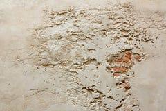 Alte vergipste Wand Stockfotos