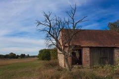 Alte verlassene Scheune und toter Baum Verlassene Wirtschaftsgebäude mit verwitterter Wand Stockfotografie