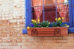 Alte, verwitterte Backsteinmauer mit dem Blumenkasten voll von den hübschen Narzissen und Ostern-Dekorationen Lizenzfreie Stockfotos