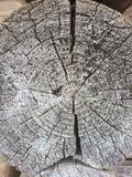 Alte verwitterte hölzerne Beschaffenheit der Baumringe Stockbild