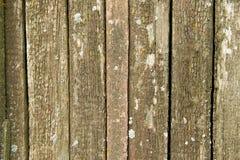 Alte verwitterte hölzerne Planken bedeckt mit Moos Lizenzfreies Stockfoto