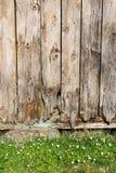 Alte verwitterte hölzerne Wand mit Blumen Lizenzfreie Stockfotos
