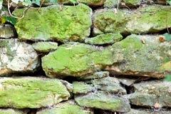 Alte verwitterte Steinwand im Wald mit Moos und cotwebs Stockbild