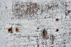 Alte verwitterte und Schalen-Holz-Zusammenfassung Lizenzfreie Stockbilder