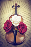 Alte Violine mit musikalischen Anmerkungen und Rosen Stockfotografie