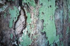 Alte Wand Lizenzfreie Stockfotos