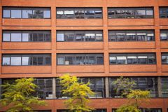 Alte Wand des roten Backsteins mit Fenstern in Wolverhampton Lizenzfreie Stockbilder