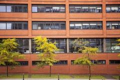 Alte Wand des roten Backsteins mit Fenstern in Wolverhampton Stockfotografie